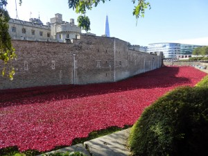 tower_of_london_poppies